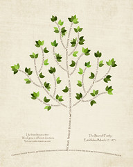 Family tree with names art cream brown present day green leaves roots