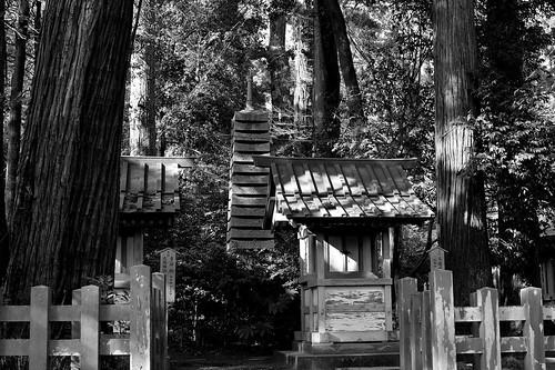香取神宮末社の風景 by leicadaisuki