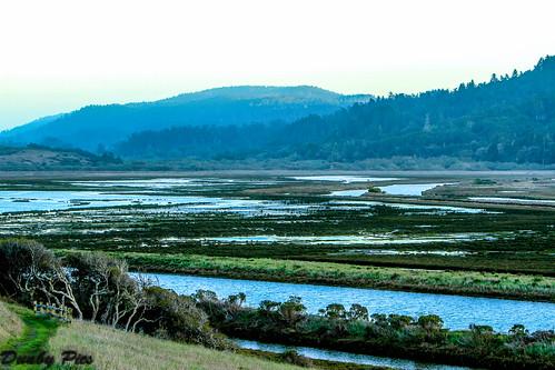 ocean california county project point one bay coast highway marin sonoma marshall coastal wetlands restoration access petaluma oyster reyes tomales giacomini