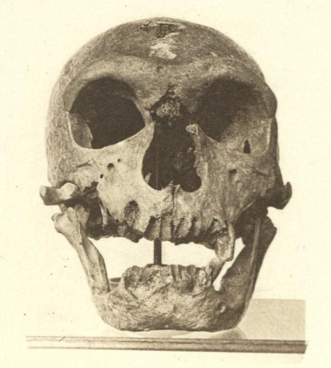 Neanderthals in 3D: L'Homme de La Chapelle – The Public