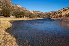 Ute Trail (2-8-15)
