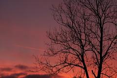 Sunset Aeroplane