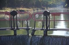 Canal de Bourgogne - Ecluse 69, Buffon - Photo of Bierry-les-Belles-Fontaines