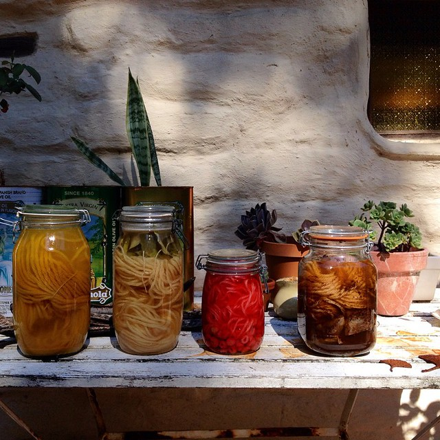 Solar dyeing coming along nicely one week later. Tumeric, ivy, raspberry, tea. Not shown (in steel pot) - strawberry.