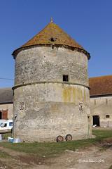 58 Beaumont-Sardolles - La Loge Pigeonnier 04_DxO - Photo of Saint-Benin-d'Azy