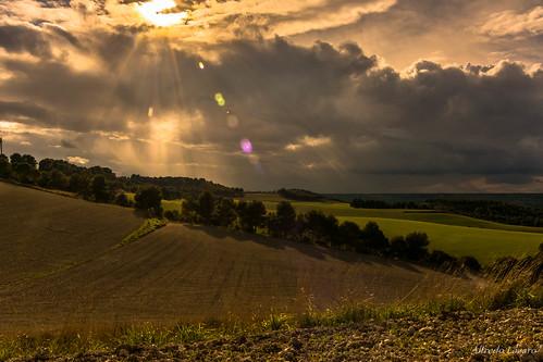 Luz, Campo y Nubes