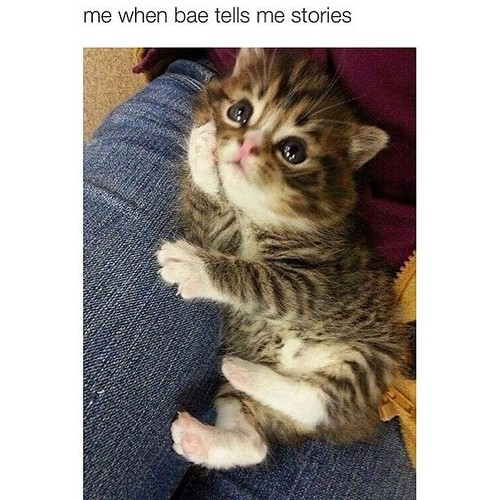 I will be like this when he does the storing telling #lol #kittymode #random #funny