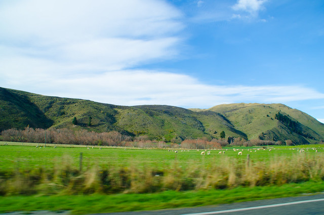 On the way to Christchurch