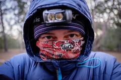 Portrait - Cold