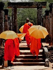 Monks Field Trip