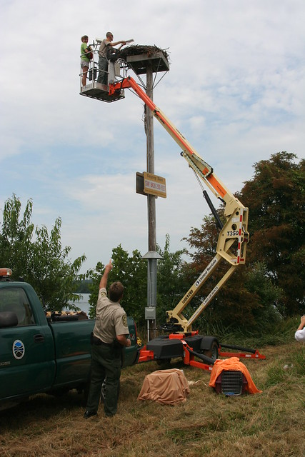 """A """"behind the scenes"""" look at the osprey cam from 2013"""