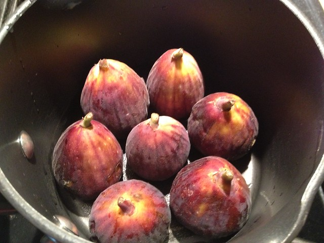 figs in pot
