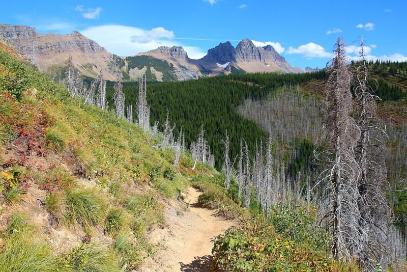IMG_4561 The Loop Trail