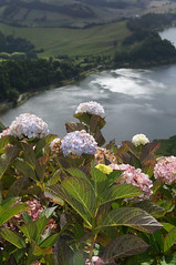 Caminhando no Paraíso~Açores