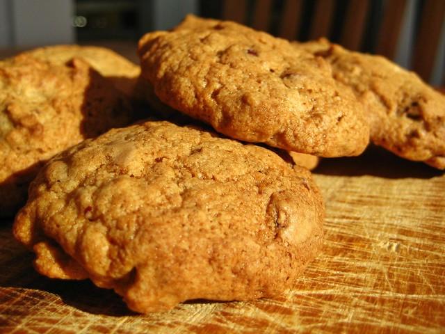 Biscotti alla Crusca Dukan Microonde