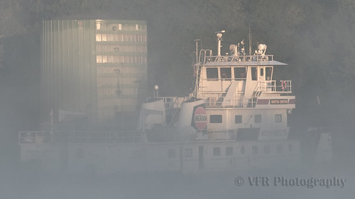 mist misty fog sunrise river tn tennessee foggy rivers inland clarksville waterway muted waterways cumberlandriver firstlight towboat ingram moored towboats montgomerycounty inlandwaterways ingrammaterials twinscrew portofstlouis ingrambargecompany navigablewaterways built1975 marthadenton 0565395 gm8645e5dieselengines mainstreamshipyards mainstreamshipyardsgreenvillems 121feetlong federalmooringcell