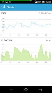 20131103_RunKeeper(Running)charts
