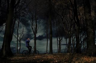 Ride (Gespensterwald 4)