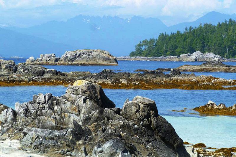Clark Island, Broken Group Islands, Barkley Sound, Pacific Rim, Vancouver Island, British Columbia, Canada