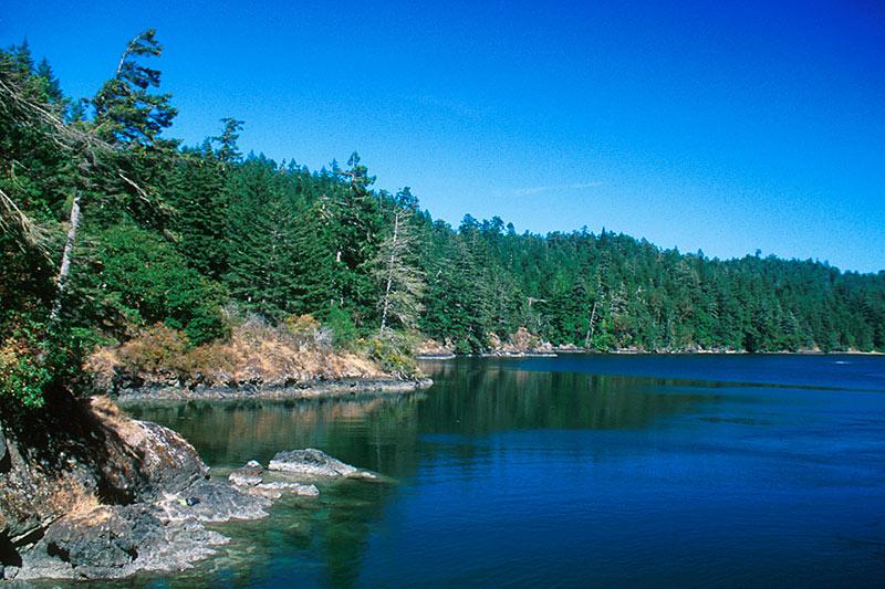 Roche Cove Park, Sooke, Victoria, Vancouver Island, British Columbia, Canada