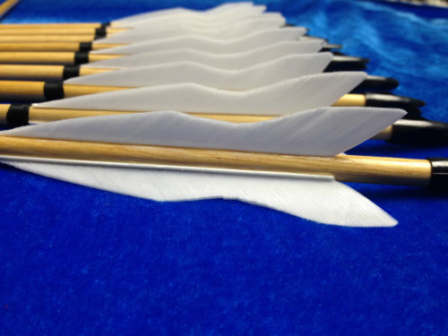 white flame practice arrows
