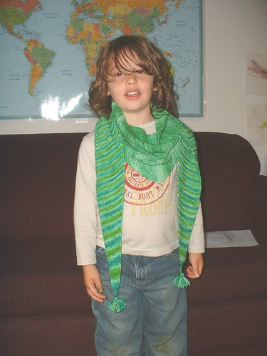llamas green shawl on