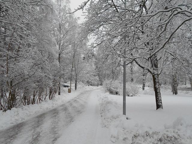 Luminen maisema Espoon Karakalliossa 4.2.2015