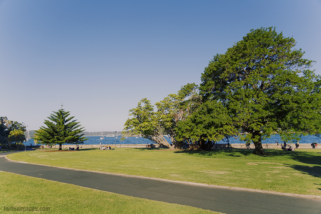 The bay from the gardens