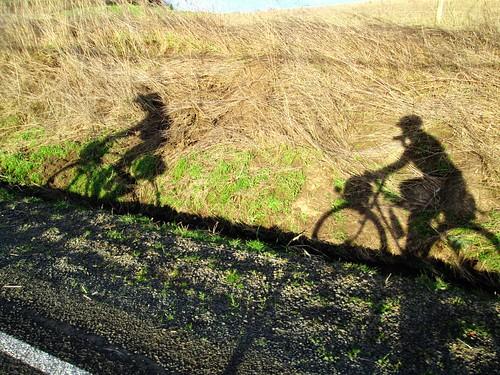 Golden Hour Shadows, Spring Hill Rd
