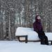 Winter by Lee Petersen