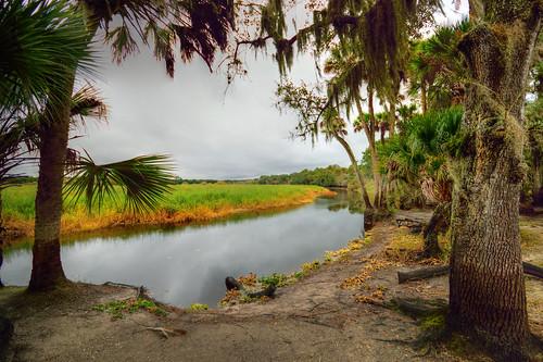 park america river state florida myakka myakkariverstatepark myakkariver