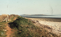 Shell post and Sully Island from West of Swanbridge. March 1973