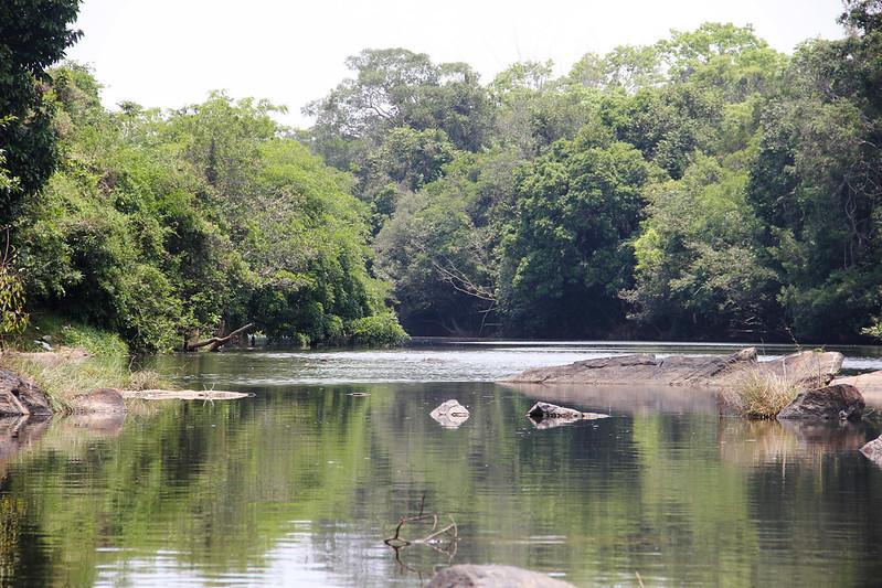 River Kabini flowing through Kuruva Dweep, Wayanad