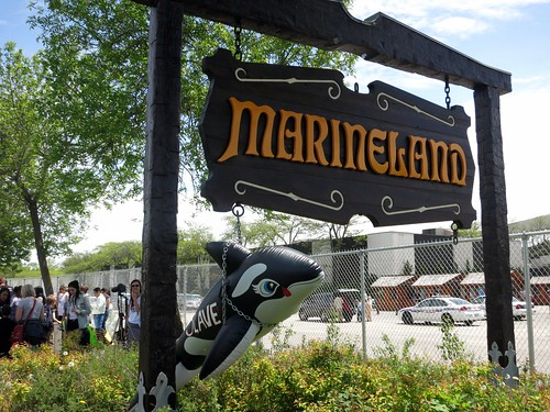 Marineland Animal Defense Demo - A sign of things.
