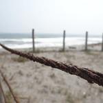 Playa zunganera