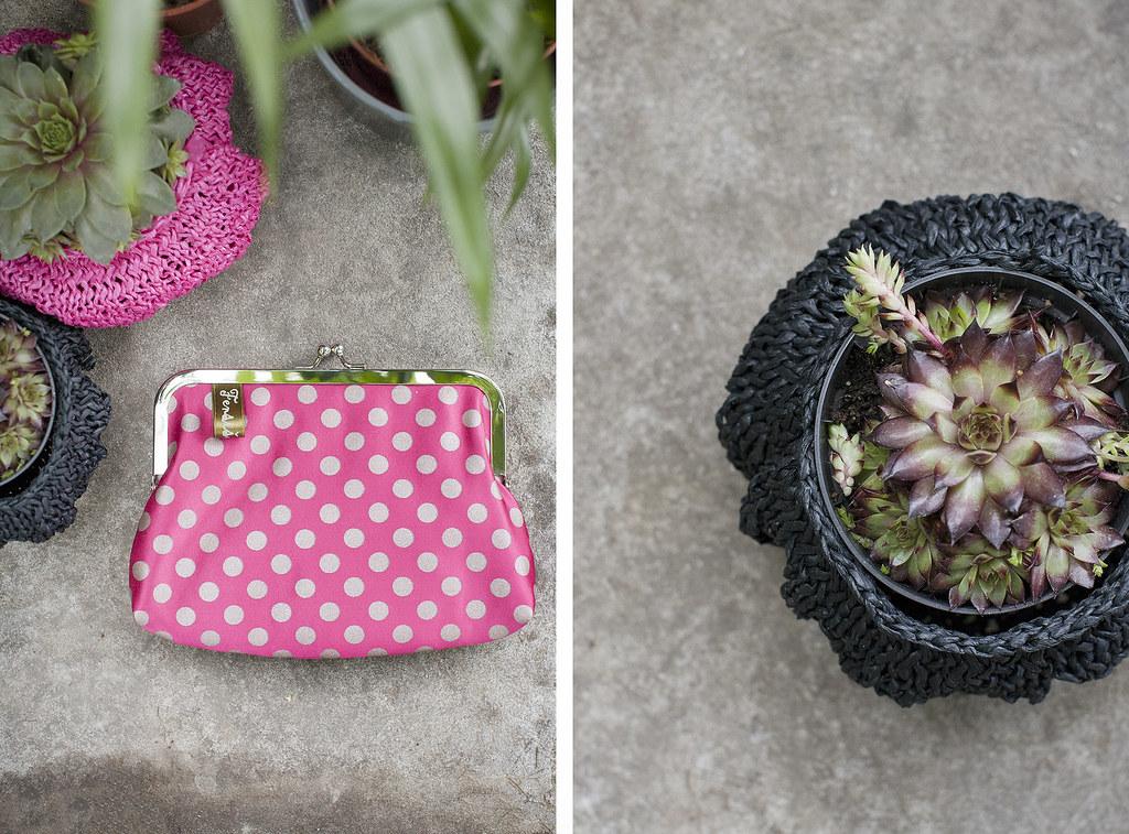 fensismensi coin purse succulent