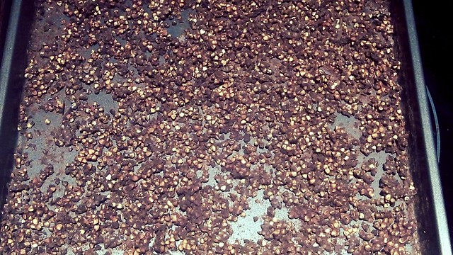 Homemade Cocoa Crispies9