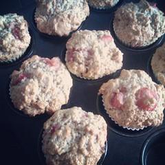 Muffins! :-D
