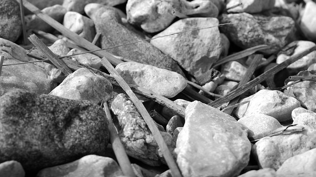 Stones black and white!