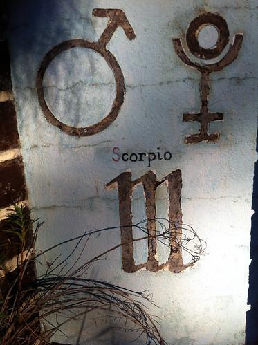 Scorpio Panel