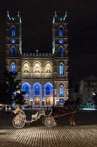 Notre-Dame and carriage