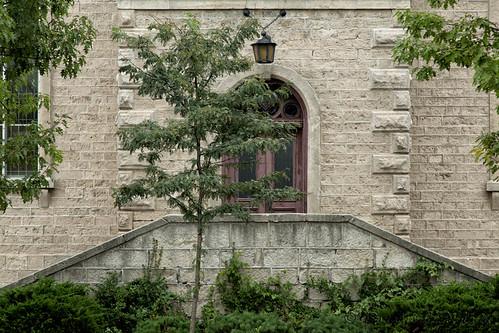 door behind a tree by D J England