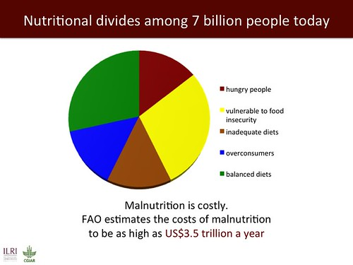 Nutritional divides among 7 billion people today