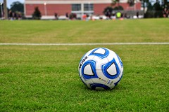 A soccer ball on a field of grass