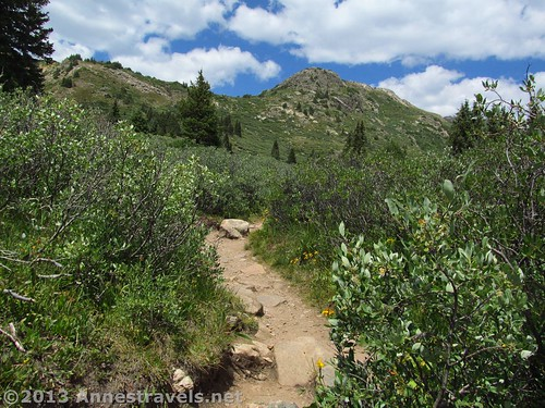 The beginning of the Linkins Lake Trail, Hunter-Fryingpan Wilderness Area, White River National Forest, Colorado