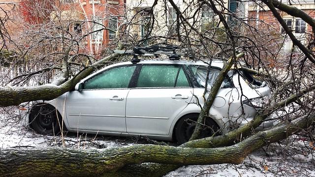 Toronto Ice Storm.