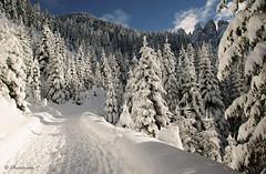 Rifugio delle Odle (val di Funes - Dolomiti)
