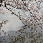0405_ueno-39