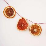 Citrus Garland & Ornaments