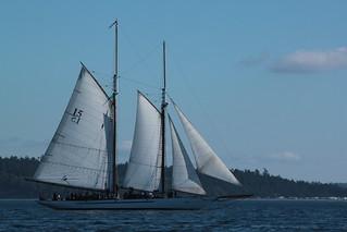 IMG_5471 - Port Townsend WA - WBF 2013 Wooden Boat Festival - aboard PEGASUS XIV during the Schooner Race - SV ADVENTURESS